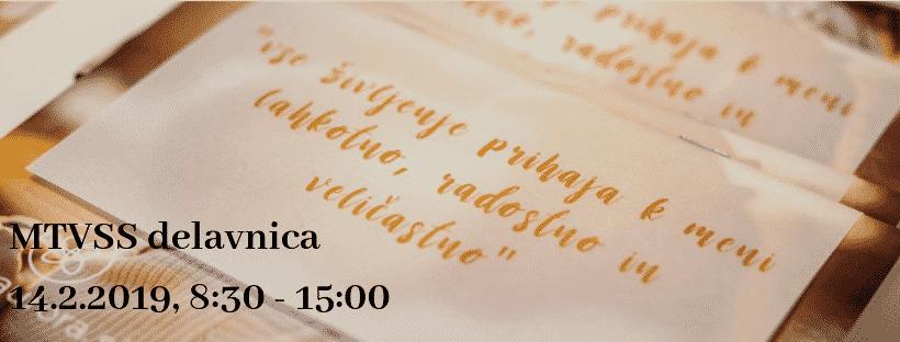 MTVSS Delavnica, 14. 2. 2019, 8:30 – 15:00, Aurora center, Ljubljana