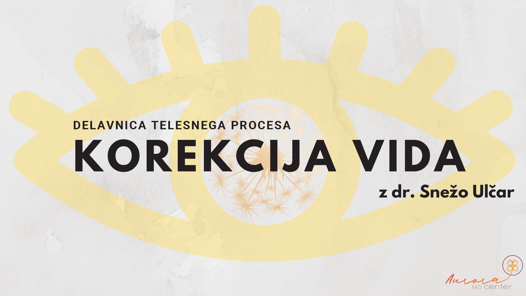 Delavnica Korekcija VIDa z dr. Snežo Ulčar: 17.9.2019, 17:00-20:00
