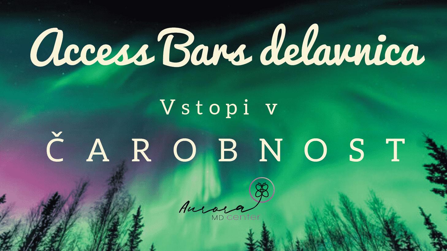 Access Bars® delavnica z dr. Snežo Ulčar, Kranj, sobota, 29.2.2020, 10:00-18:00