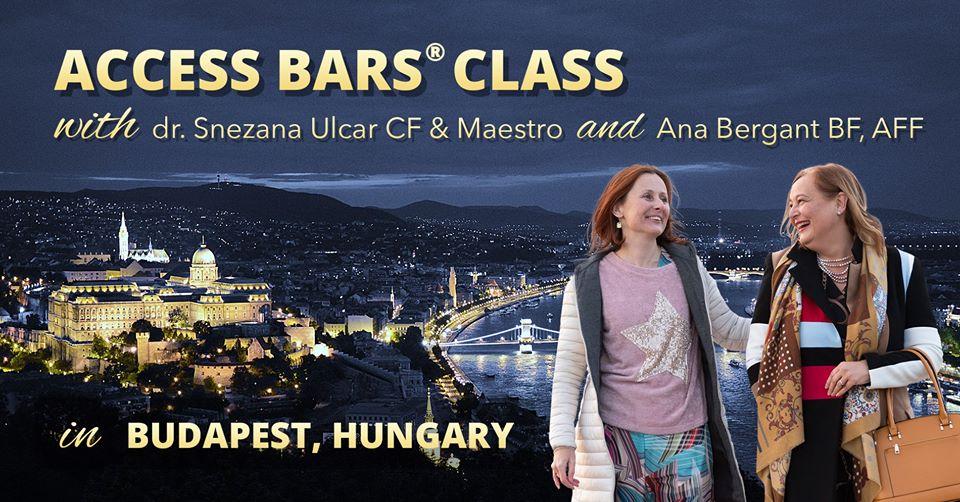 Access Bars class online, 26.4.2020, 9:30-17:00 (CET)