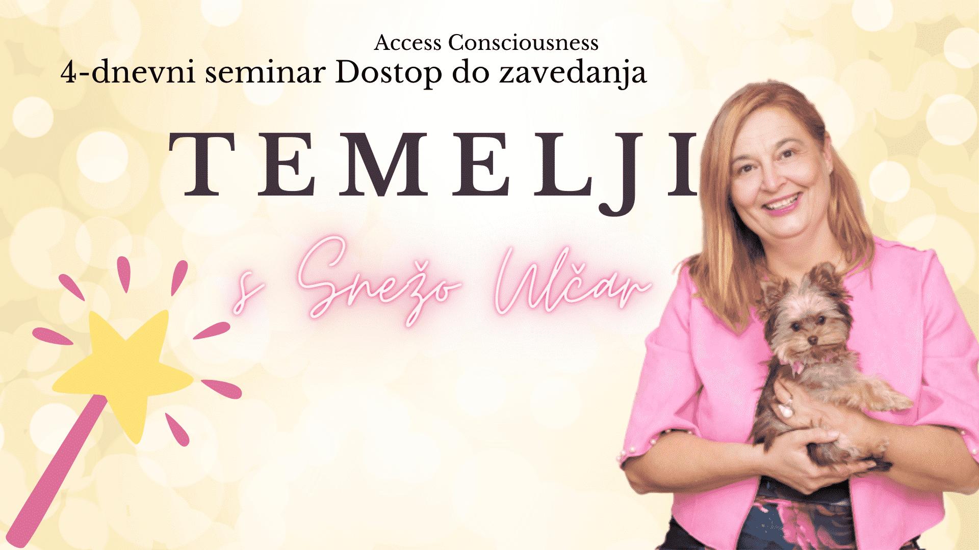 Seminar TEMELJI s Snežo Ulčar, dr.med.