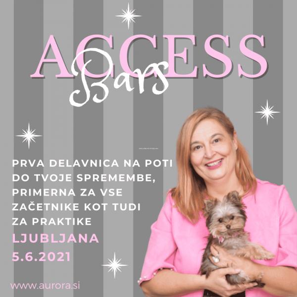 Access BARS delavnicaⓇ s Snežo Ulčar, dr.med. v Ljubljani